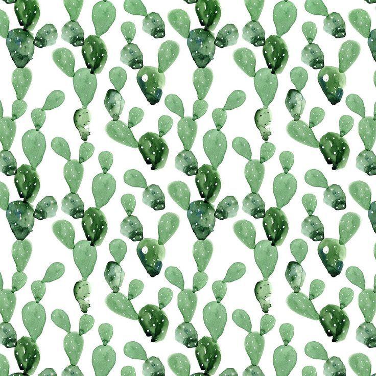Cactus Iphone Wallpaper Watercolor Cactus Wallpaper Iphone