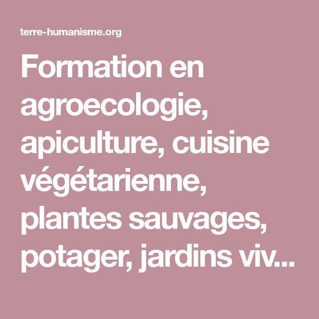 Formation en agroecologie, apiculture, cuisine végétarienne, plantes sauvages, potager, jardins viviers