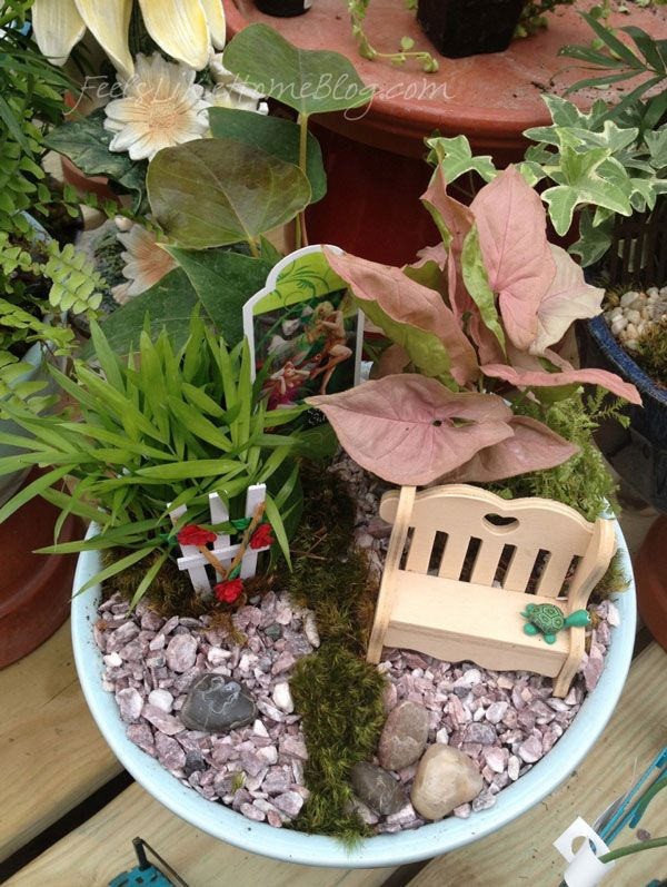 1178 Best Images About Fairy Garden On Pinterest
