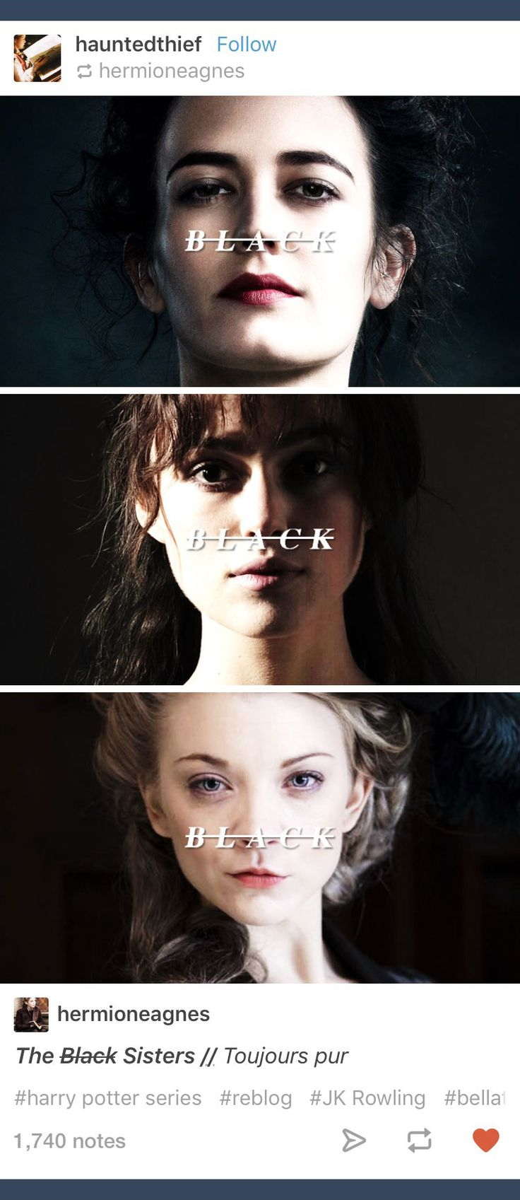 Tumblr; Harry Potter; Bellatrix Lestrange; Andromeda Tonks; Narcissa Malfoy