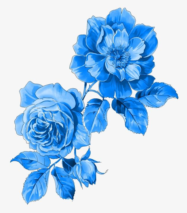 Flowers Pattern Flower Print Png Transparent Clipart Image And Psd File For Free Download Clipart De Flor Arte Con Flores Rosas Azules Tatuajes