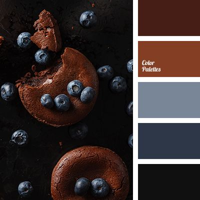 black and blue, black and brown, brown and black, cinnamon color, cinnamon sticks color, color palettes for designers, contrasting combination of warm and cold tones, dark-red color