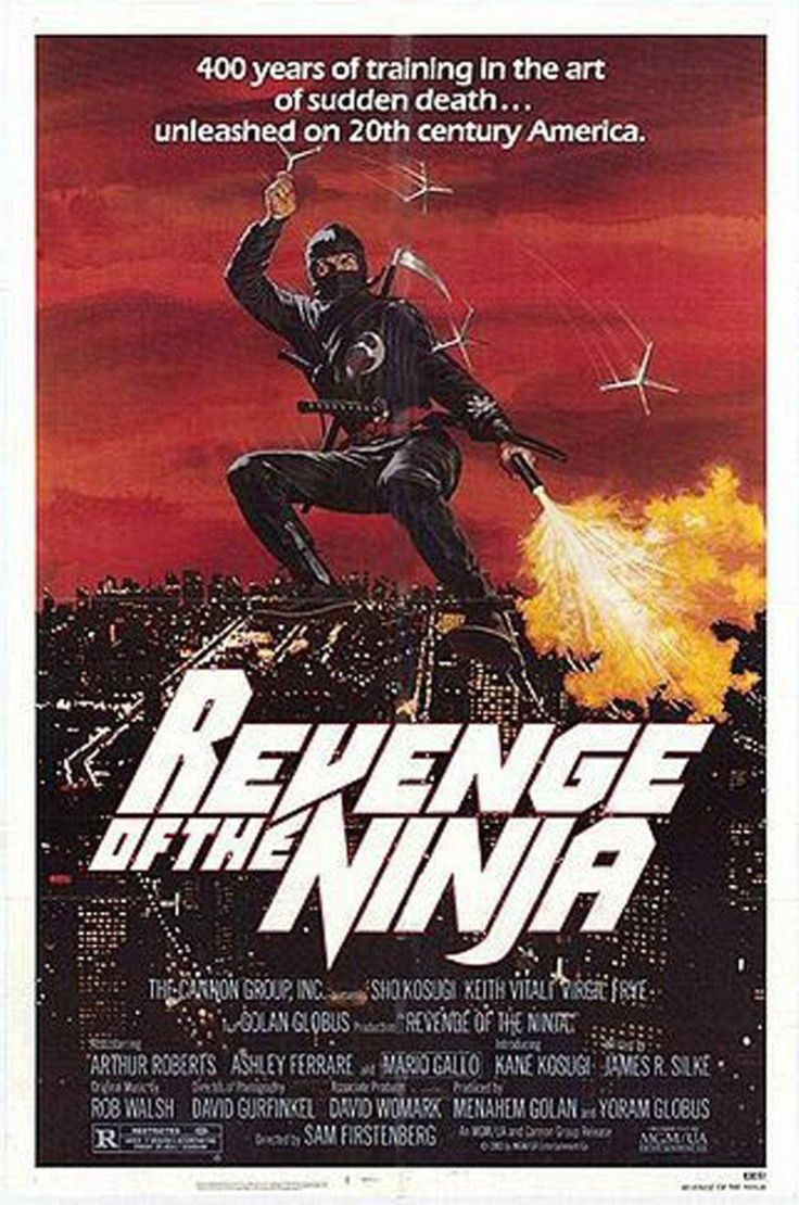 Revenge of the ninja This is how I became an otaku.
