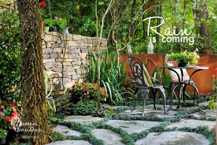 ดูแลสวนให้สวยในหน้าฝน My Garden in Rainny Season