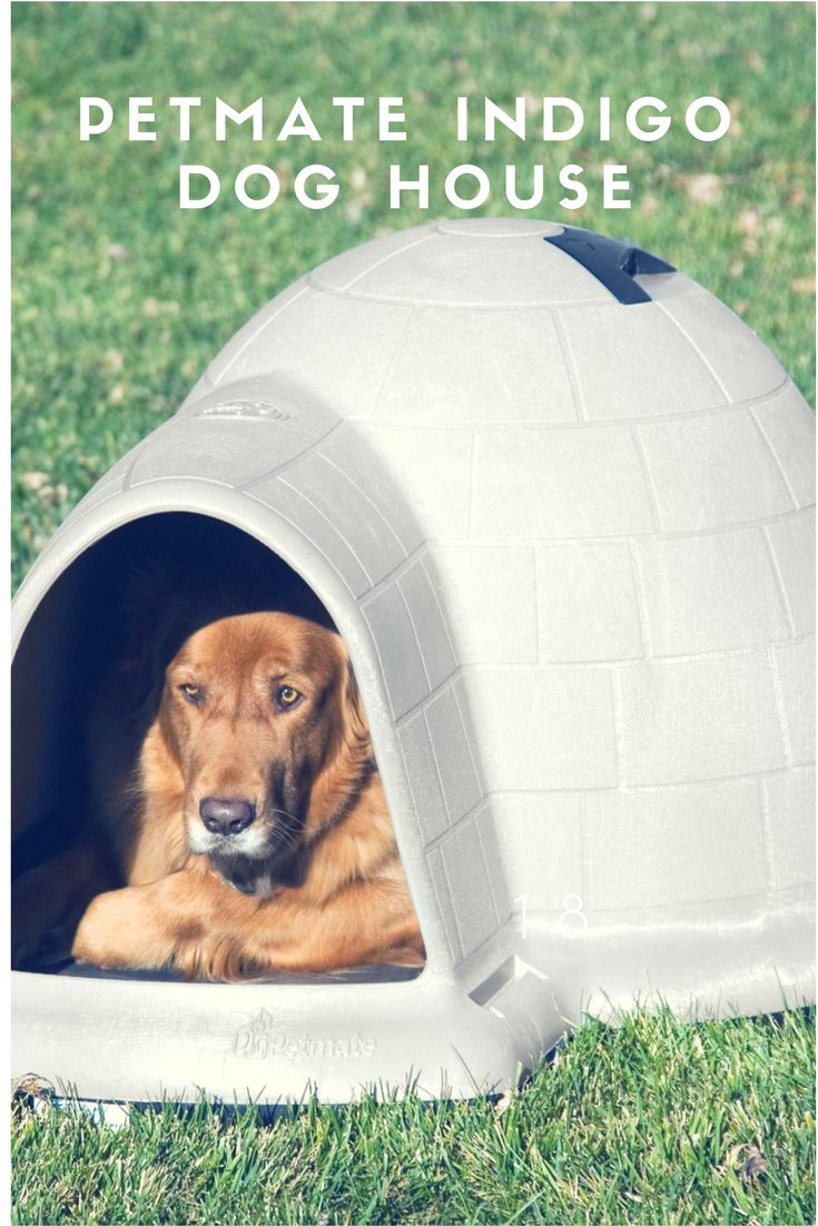 Petmate Indigo Dog House!  Home is truly where the heart is… Give your dog the home he'll love all year-round with one of our comfortable, durable Petmate shelter! For more: http://amzn.to/2e1JZXb