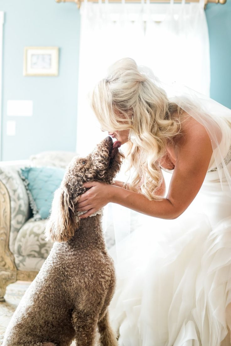14 Best Images About Pets In Your Wedding On Pinterest