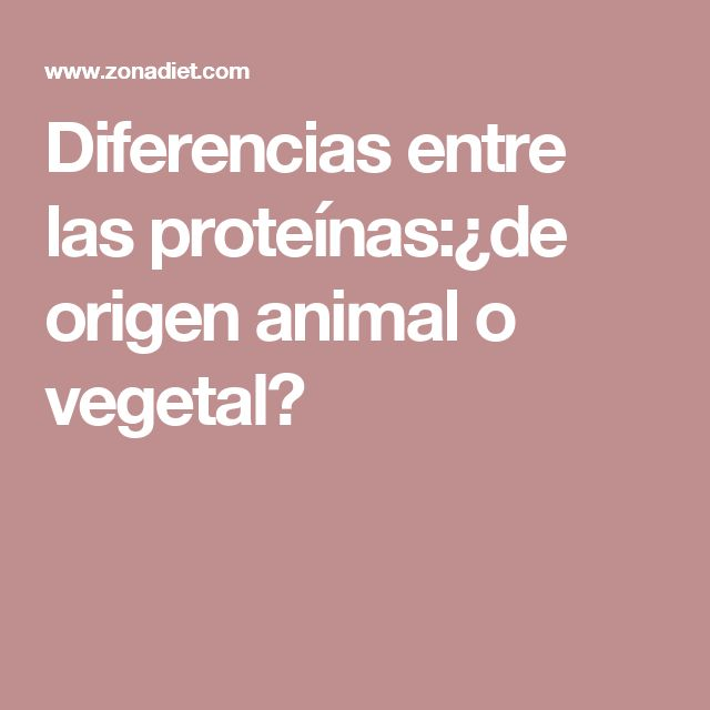 Diferencias entre las proteínas:¿de origen animal o vegetal?