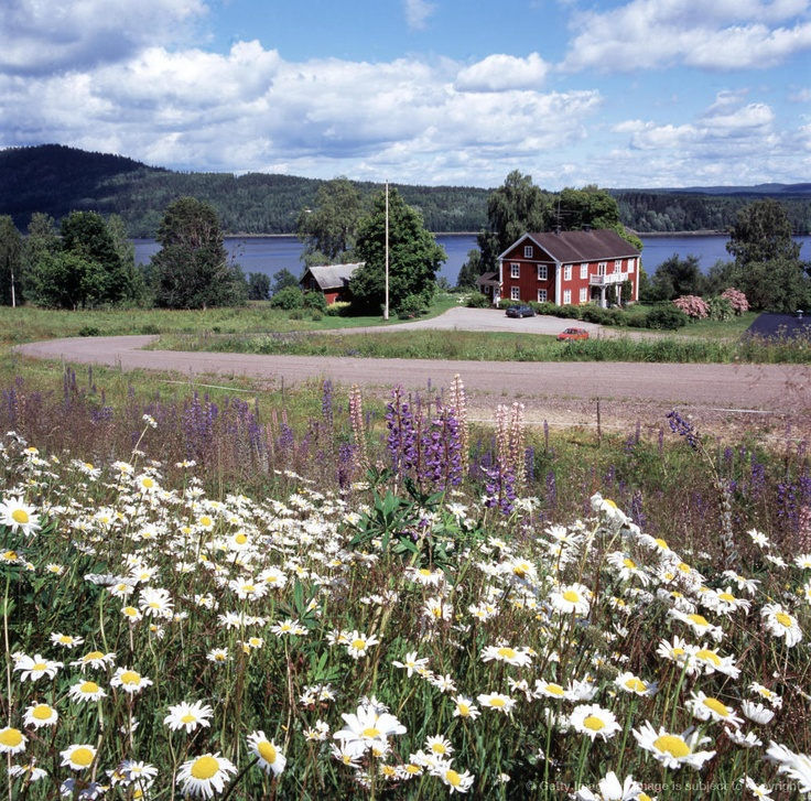 Near lake Rottingen, Varmland, Sweden.