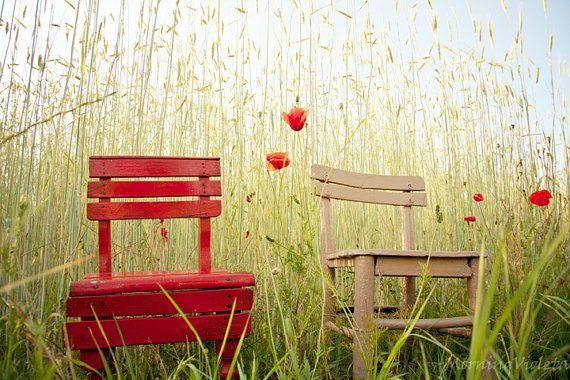 Nature Photograph fine art photo print two chairs by violetdart