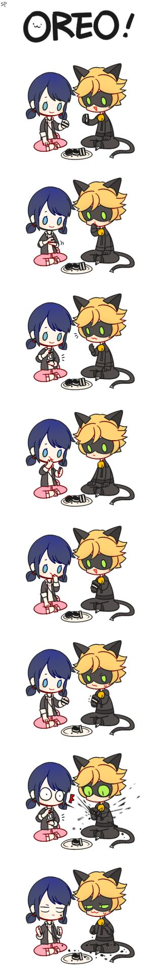 Chat Noir clearly lacks delicacy. XD it's so cute. Miraculous Ladybug. chatmari oreo
