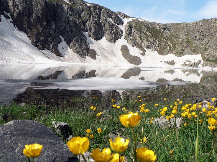 Озеро Перевальное. Берега озера желтеют цветущими лютиками