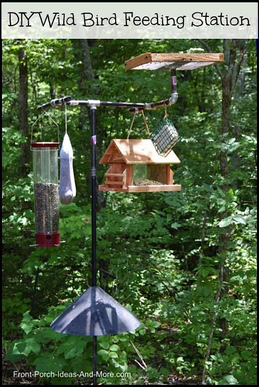 A wild bird feeding station...see how it's all put together on Front-Porch-Ideas-and-More.com #birdfeeders #wildbirdfeeder