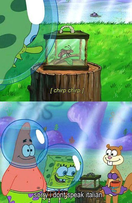 LOL - spongebob - www.funny-pictures-blog.com