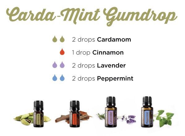 This evening Let's put together a cara-mint gumdrop diffusing blend. Take 2 drops of cardamom essential oil, 1 drop cinnamon, 2 drops lavender, 2 drops peppermint. Cardamom essential oil promotes clear breathing and maintains respiratory health. While Cinnamon provides healthy metabolic function. Lavender is widely used for it's calming and relaxing qualities. Peppermint essential oil promotes healthy respiratory function and clear breathing.