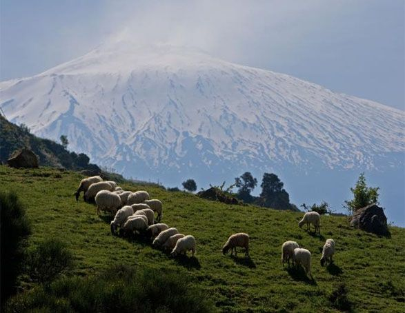 Just this side of, heaven!    Etna, Italy