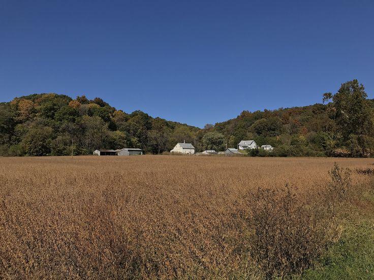 Autumn on the farm. Photo courtesy of Christopher Martin. Randolph County, IL. #randolphcountyil