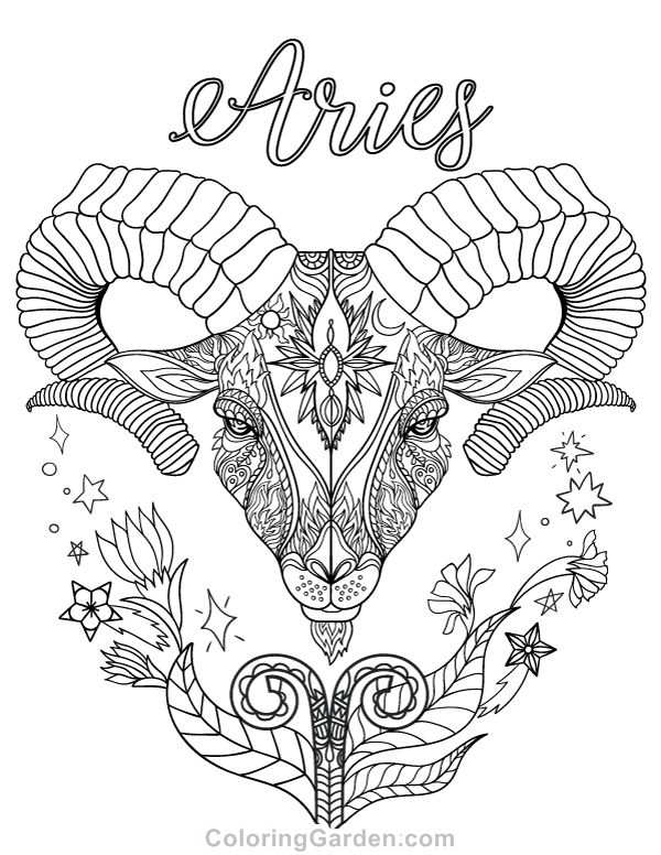 Free printable Zodiac adult coloring page featuring Aries the Ram. Download it in PDF format at http://coloringgarden.com/download/aries-coloring-page/