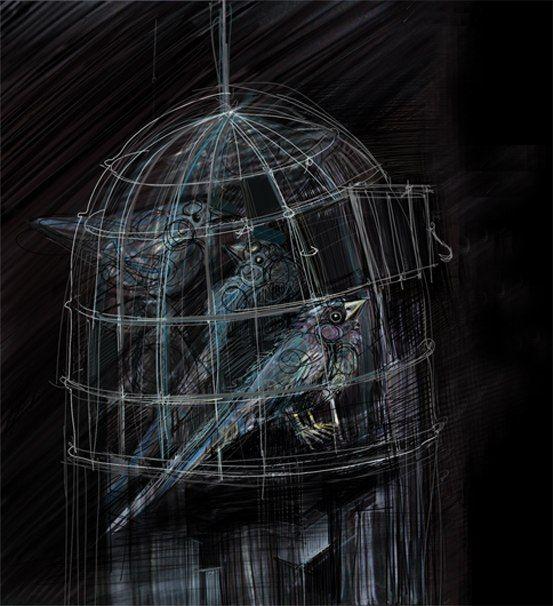 why birds do not fly away? #graphics #illustration #birds #black