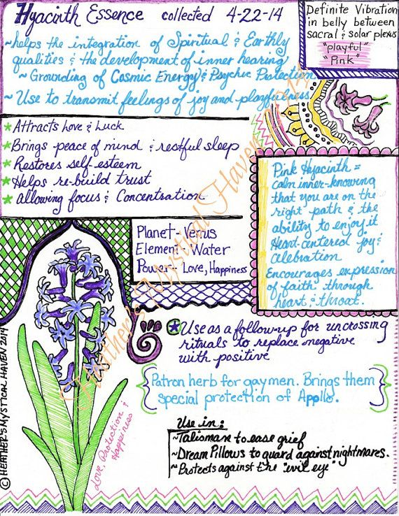 Hyacinth Information Page - one pdf download page on the magical properties of hyacinth to print out for your Book of Shadows or Transformation Journal. Handwritten and decorated
