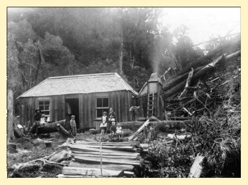 postcard of settler homestead, Dunedin, 1906
