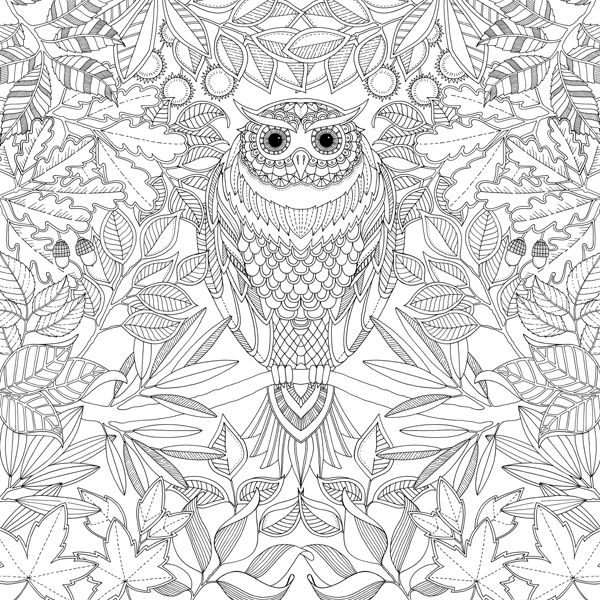 Secret Garden By Johanna Basford Published Laurence King Coloring Book