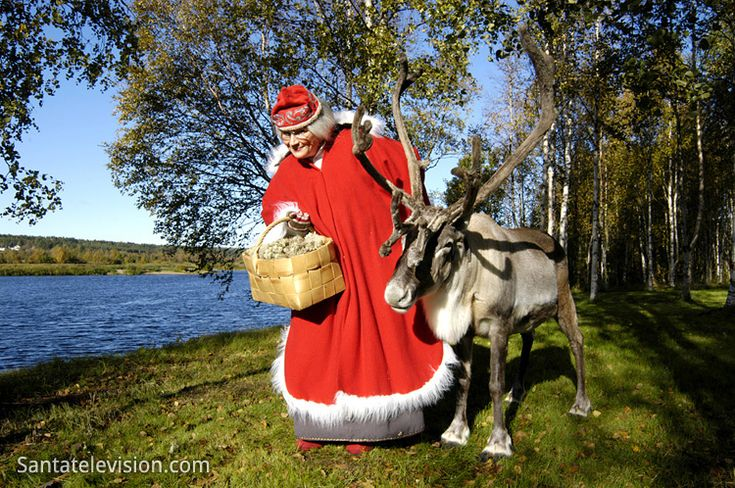 Mrs. Santa with a reindeer in Lapland