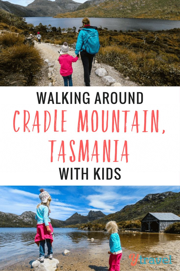 """The Dove Lake Circuit beneath Cradle Mountain is one of Tasmania's """"60 Great Short Walks"""". At 6km The Dove Lake is great to do with kids."""