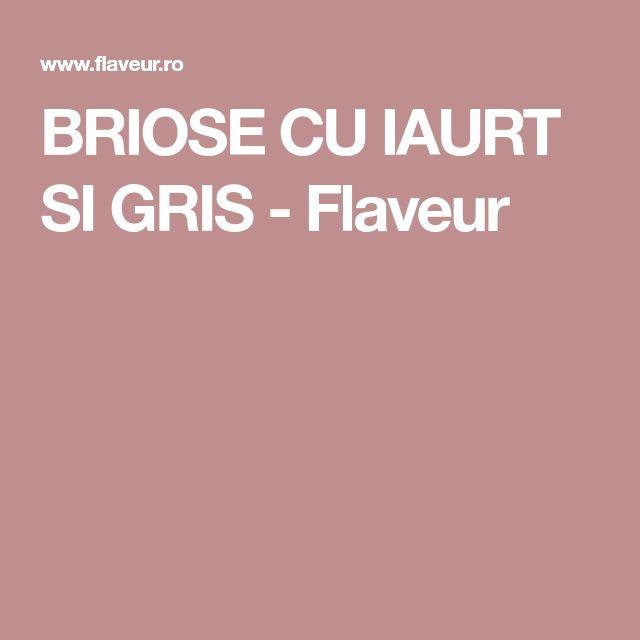 BRIOSE CU IAURT SI GRIS - Flaveur