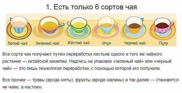 О сортах чая Все чаи производятся из листьев чайного растения. Разные сорта чая - это разные способы ферментации этих листьев. Под ферментацией понимают окисление, но, на самом деле, китайцы скрывают под этим словом сложные древние процессы переработки, всю правду о которых мы никогда не узнаем. В общих чертах это выглядит так: когда чайный лист срывается с ветки, в нем начинаются процессы изменения под воздействием воздуха и бактерий. Лист меняется, его подвяливают, мнут, скручивают, су...