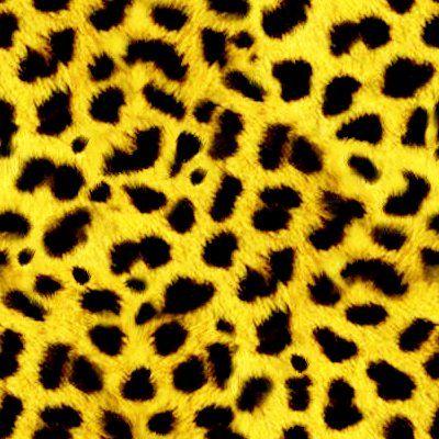 Real Leopard Print Pattern | www.pixshark.com - Images ...