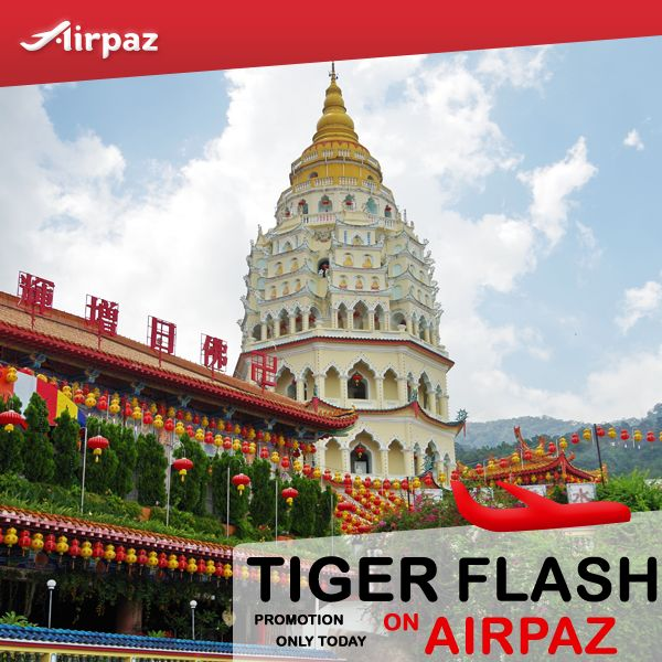 Only Today ! Tiger Flash Promotion ! Take direct flight from #Singapore to :  Penang only for $34 Krabi only for $39 Kalibo only for $79 Malé only for $99 Zhengzhou $94 Where will you go on your holiday ? Book Now : http://Airpaz.com  #CheapFlights #Promo #TigerAir #TigerFlash #Airpaz #Singapore #Asia #Travel #Backpacker #Backpacking #Holiday #Vacation #Trip #Sale