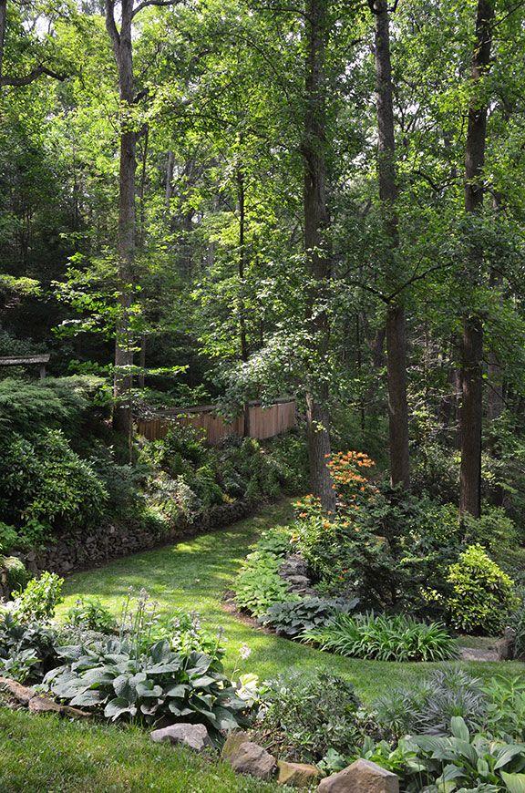 Slope shade garden