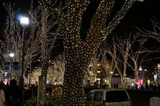 Harajuku street lights