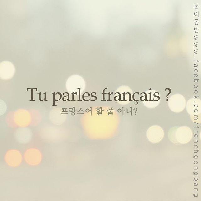 오늘의 프랑스어 표현  Tu parles français ? [뛰 빠흘르 프랑쎄] 프랑스어 할 줄 아니?  한 주를 다시 시작하면서, 이번에는 프랑스어를 배우면서 많이 듣고, 또 하게 되는 표현을 하나 알려드릴까 합니다.  프랑스어에 Tu를 사용하면 우리말에서의 반말이라고 생각하시면 되는데요,  대개 비슷한 나이의 사람이나 인터넷에서 만난 사람의 경우, 상대방에게 프랑스어를 할 줄 아는지 묻고 싶을 때는 위 표현을 사용하시면 됩니다  A bientôt ! #프랑스 #프랑스어과외 #불어과외 #불어 #프랑스어 #프랑스영화 #프랑스자수 #신촌 #연대 #이대 #서강대 #홍대 #coréen #파리 #독립서점 #독립출판 #일상스타그램 #공부스타그램