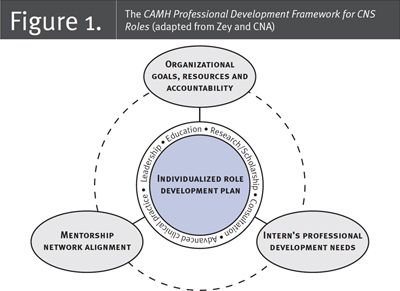 Fig.1. Nursing Leadership 29.3. Capacity Building through a Professional Development Framework for Clinical Nurse Specialist Roles: Addressing Addiction Population Needs in the Healthcare System
