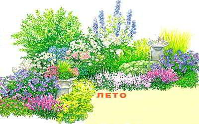 Клумба непрерывного цветения, всесезонный цветник