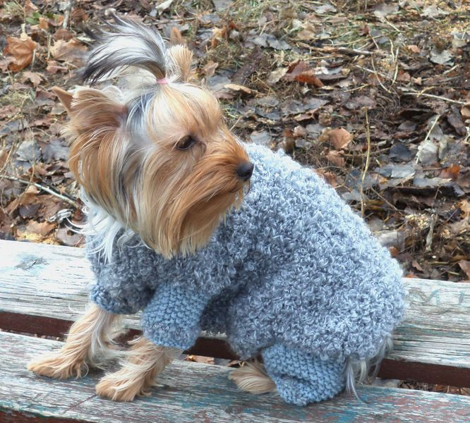 Dog Sweater,Hand Knit Dog Clothes,winter dog sweat from Crocheted booties, blanket, exclusive garments are handmade   LyudmilaHandmade by DaWanda.com