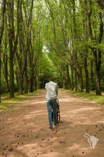 jardin serralves à Porto au Portugal. Un lieu idéal pour se promener et profiter…