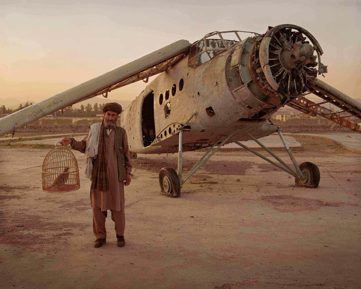 Simon Norfolk - Afghanistan Chronotopia - Old Man with Fighting Bird, Kabul