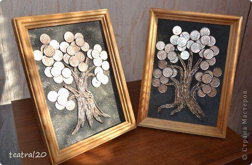 Это мои самые первые денежные деревья.  фото 1