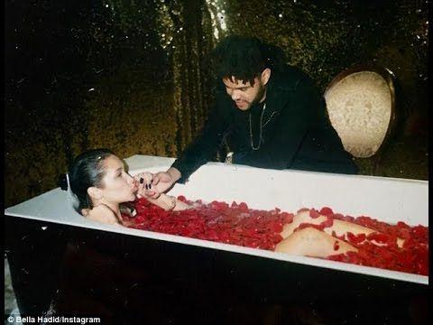 Bella Hadid and the Weeknd Break Up | bella hadid and the weeknd cute mo...
