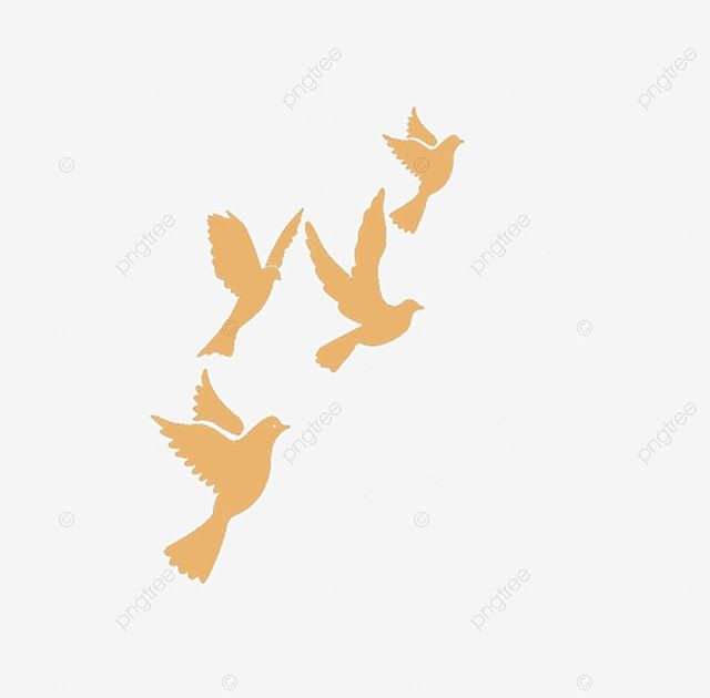 Gambar Animasi Burung Merpati Terbang Merpati Terbang Kartun Merpati Terbang Merpati Putih Merpati Mewarnai Gambar Burung Terban Gambar Gambar Burung Animasi