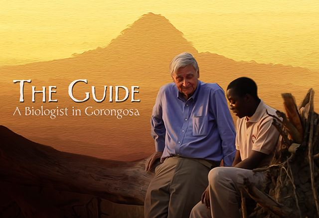 Inspiring story of a young man from Mozambique who discovers a passion for science and conservation after working with world-renowned biologist E.O. Wilson.
