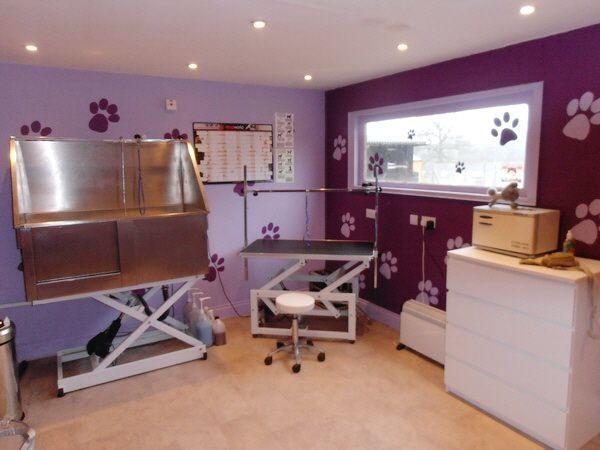 Dog Grooming Salon Decorating Ideas Google Search Salonshopsupplies Dog Grooming Salons Grooming Salon Dog Grooming Shop