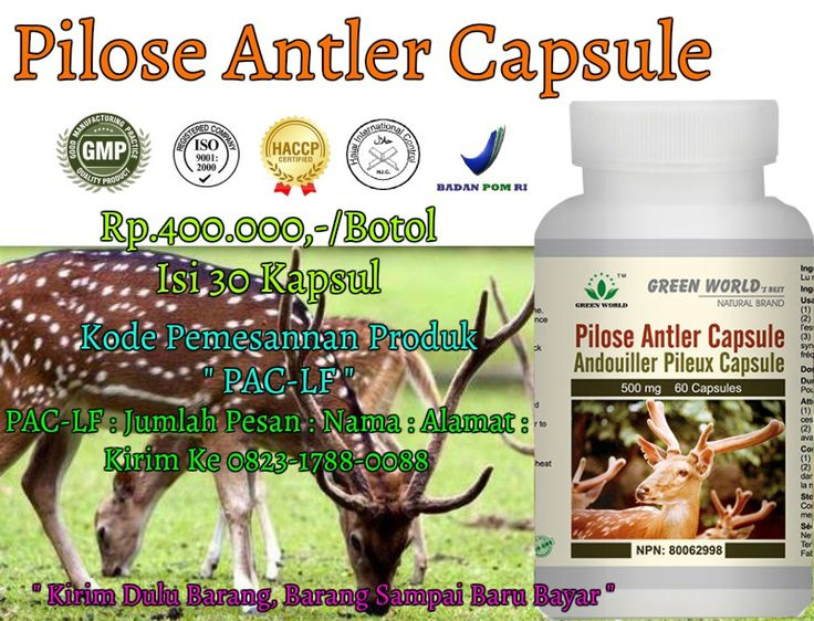 Pilose Antler Capsule Green World http://obatherbaldiet.net/pilose-antler-capsule-green-world/ || http://ow.ly/ExCM3053vg3