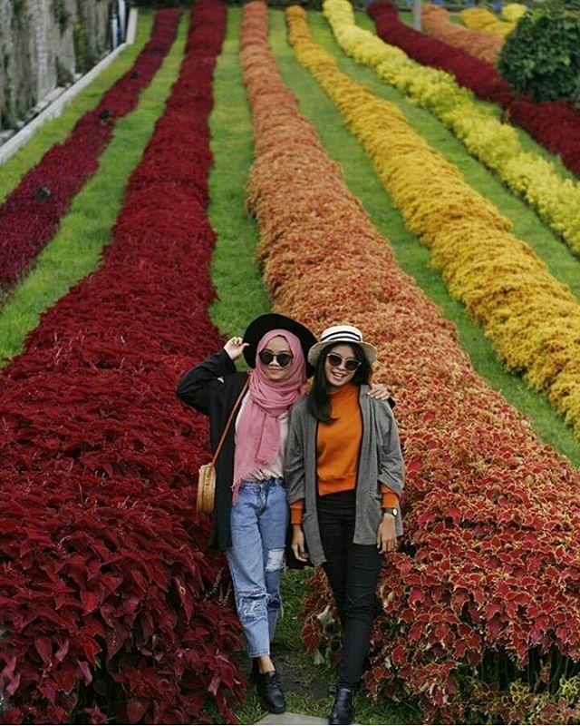 Selamat pagi libur terakhir di bandung yuk! . . Photo by @emmaltfh  At Rainbow Garden floating market Lembang ________________________ . #bandungtrip #tripbandung #jelajahbandung #explorebandung #bandungbanget #discoverbandung #infobdg #bandung #indonesia #wisatabandung #bandungjuara #jalanjalanbandung #tourbandung #travelbandung #visitbandung #visitindonesia #indotravellers #exploreindonesia #medan #pekanbaru #banjarmasin #pontianak #jakarta #bali #surabaya #rajaampat #liburan…