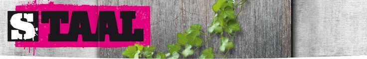 10+ images about Staal taal en spelling methode on Pinterest : Bingo ...