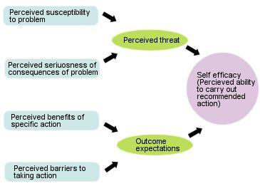 Best 20+ Health Belief Model ideas on Pinterest | Behavioral model ...