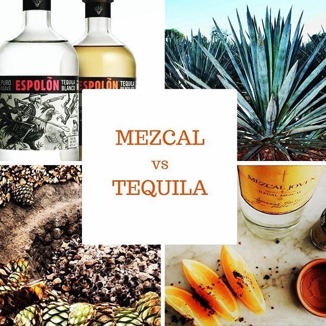 New blog post alert  Mezcal vs Tequila. Have you tried Mezcal yet? #mezcal #tequila #agave #mexico #travel #onthesauceagain #shots #cocktail #cocktails #distillery #cheers #drinks #booze #spirits #oaxaca #pina #imbibe #instatravel #blanco #reposado #anejo #alcohol #spirit #tequilalover #mezcaltime #spiritsblogger #dram #womenwhodrink #distilling #firewater
