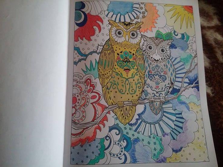 Kaptuk!  #Partvonalkiadó #coloringbook #felnőttszínező #Adrikönyvmoly #Baglyok